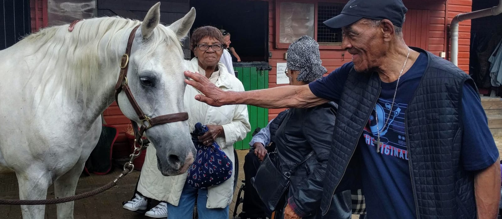 No Place Like Home: Equine Therapy